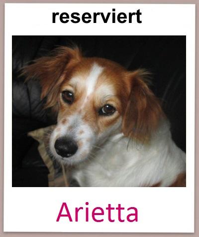 Arietta res neu