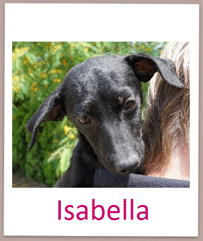 Isabella prof