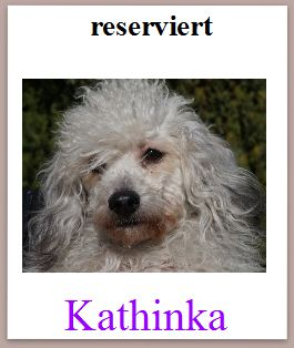 kathinka mini res
