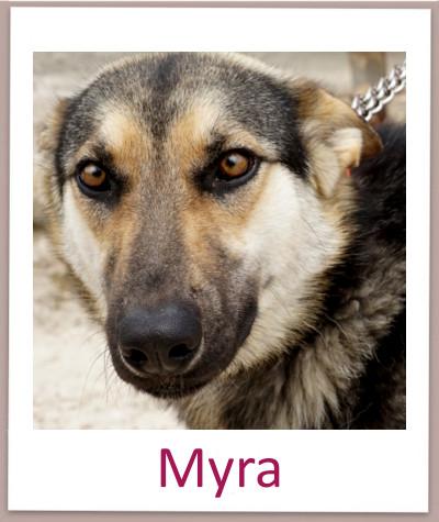 Myra prof