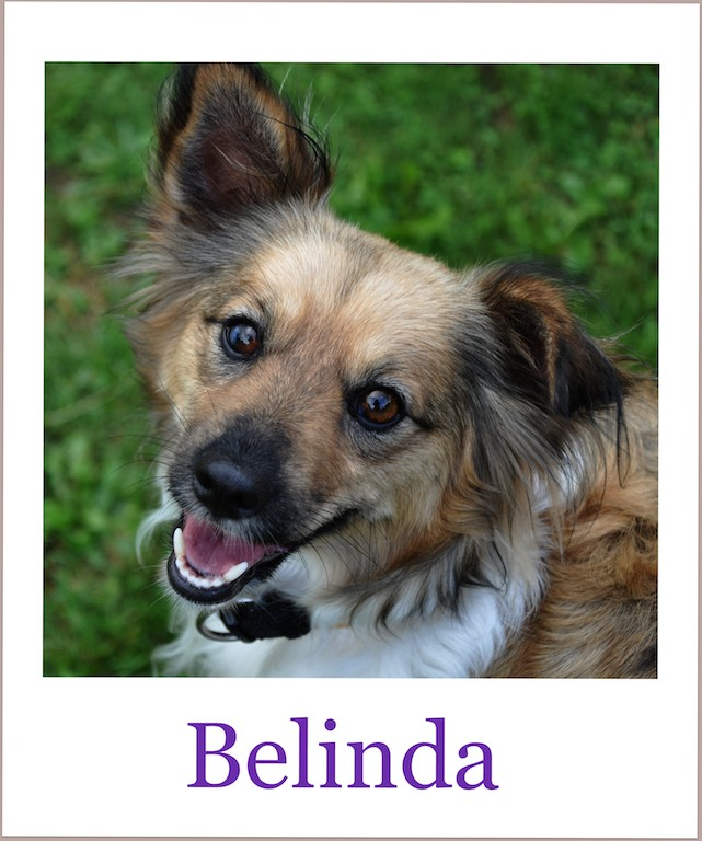 BelindaProneu