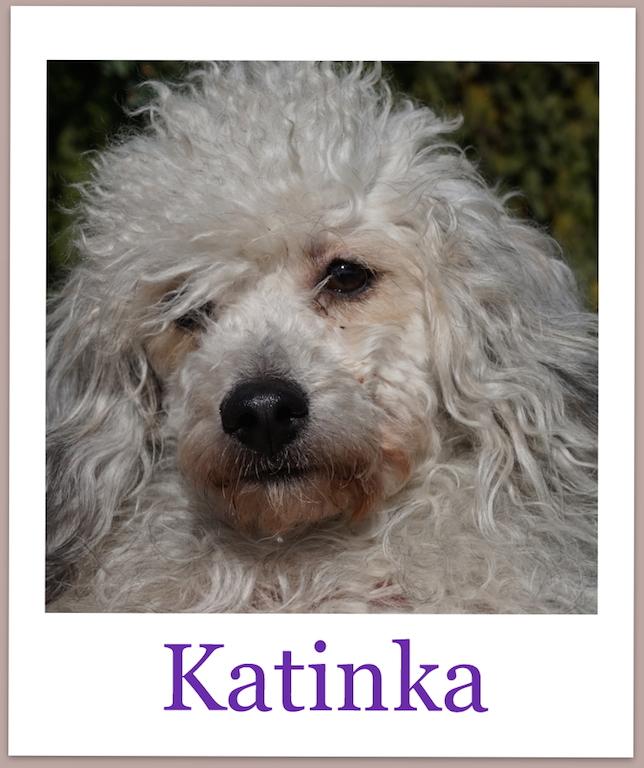 KatinkaPro