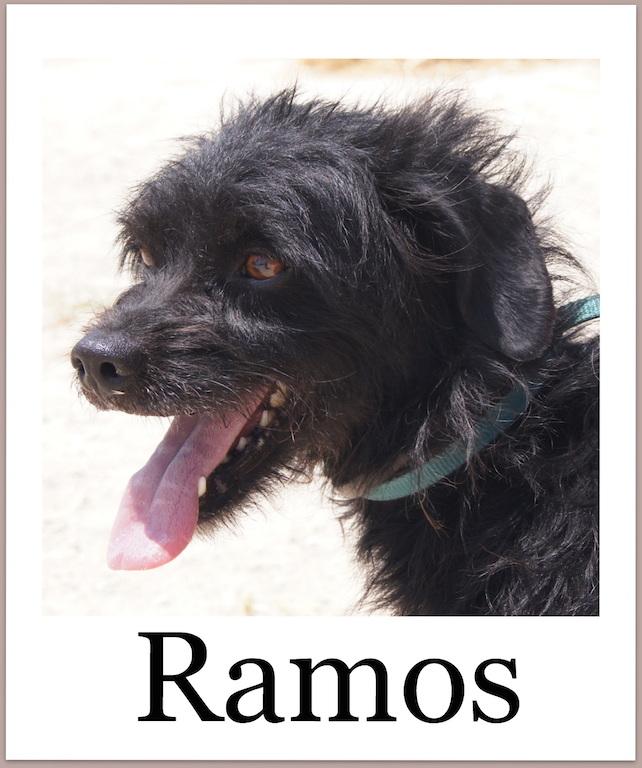 RamosPro
